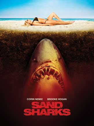 sand sharks brooke hogan