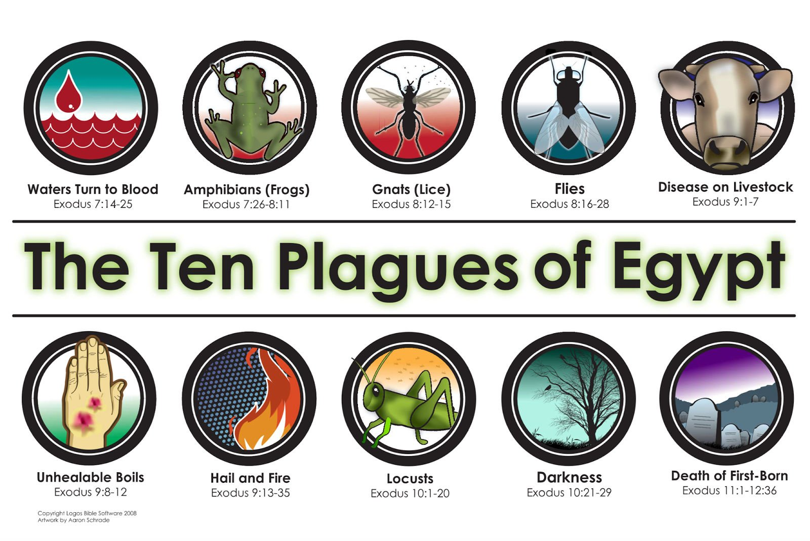 Egypts 10 Plagues