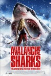 Avalanche Sharks 2013
