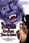 Dracula Has Risen from the Grave Movie Poster / Movie Info page