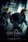 Harry Potter and the Deathly Hallows: Part 1 Movie Poster / Movie Info page