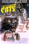 The Night of a Thousand Cats