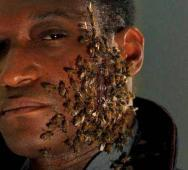 Top 10 Things You Didn't Know About Candyman Video
