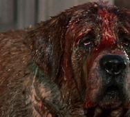 Stephen King's CUJO (1983) KILL COUNT [Video]