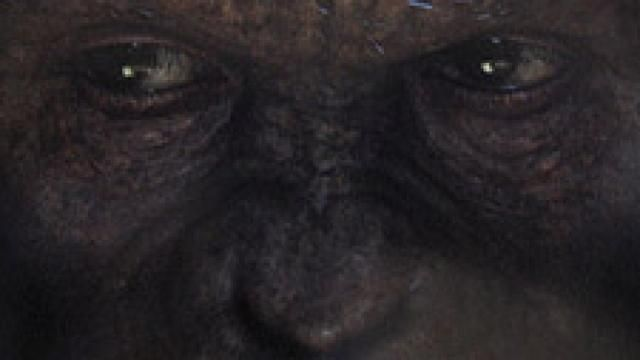 Rise of the Planet of the Apes - August 5
