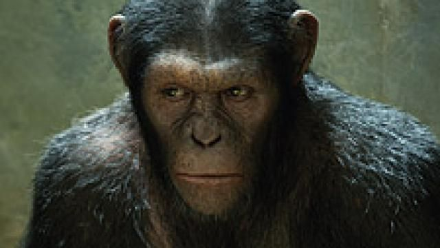 Rise of the Planet of the Apes: The Set Visit