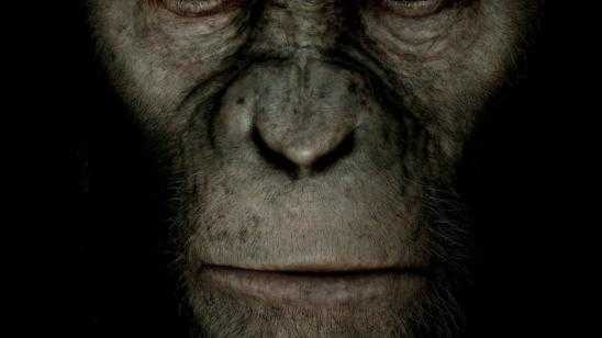 Dawn of the Planet of the Apes Confirmed