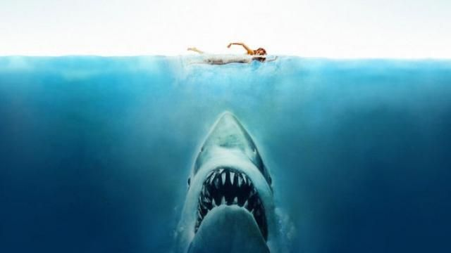 Sony Buys BIG BUDGET Shark Movie Script In the Deep