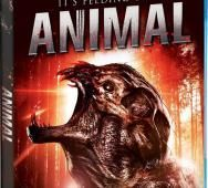 Chiller's 'Animal' Creature Feature and Scream Factory Blu-ray / DVD Release Details