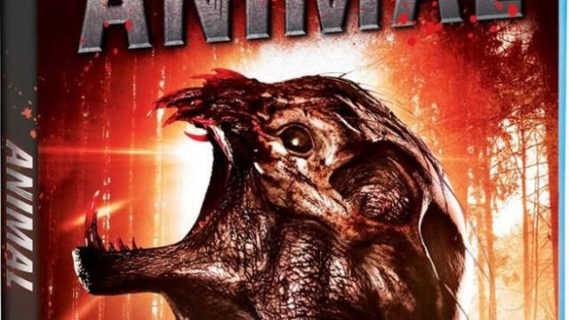 Chillers Animal Creature Feature and Scream Factory Blu-ray / DVD Release Details