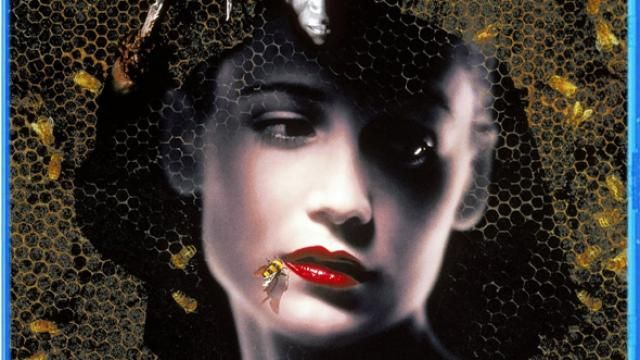 Scream Factory to Release Candyman: Farewell to the Flesh Blu-ray Details