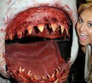 Cassie Scerbo Returning in Syfy's Sharknado 3 (2015)