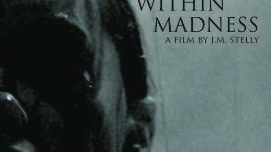 Within Madness Blu-ray / DVD Release Date and Poster