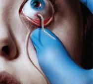FX's The Strain Season 2 Promo Videos Arrive