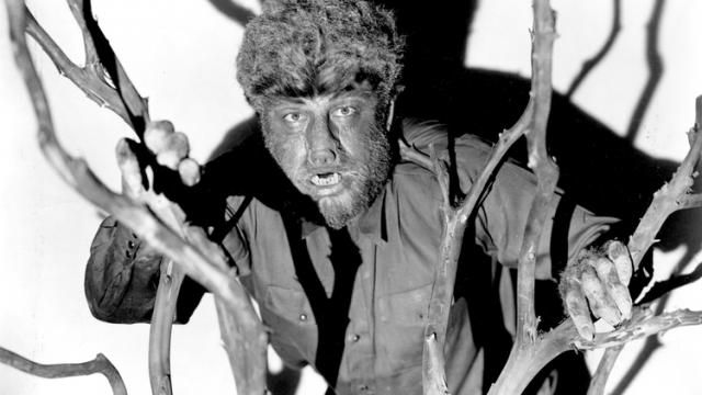 THE WOLF MAN REMAKE Release Date News Update