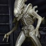 Neca Series 7 Alien Figure 03