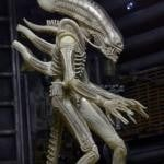 Neca Series 7 Alien Figure 04