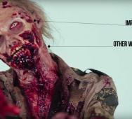 100 Years of Zombie Evolution Throughout History [Video]