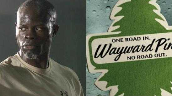 Djimon Hounsou Joins WAYWARD PINES Season 2