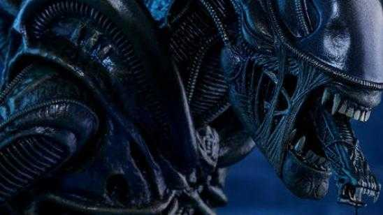 Alien Warrior Sixth Scale Figure from Hot Toys and Sideshow Collectibles