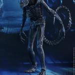 Warrior Alien Figure 05
