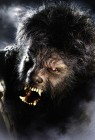 The Wolfman Part 2