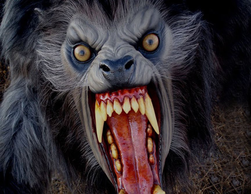 25 Must See Best Werewolf Movies Of All Time Hell Horror