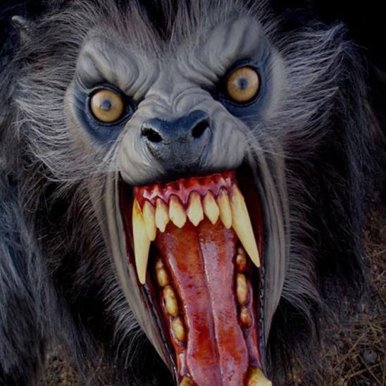 Top 25 Best Werewolf Movies
