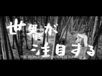 Kuroneko (1968) - Trailer movie trailer video