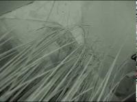 Bhoot (2003) - Trailer movie trailer video