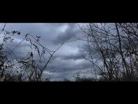 The Mothman of Point Pleasant (2017) - Trailer