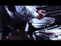 Bloodline (2011) - Trailer