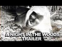 A Night in the Woods (2011) - Trailer movie trailer video